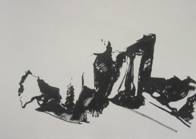 Nada Pivetta, Copia dal vero di una metamorfosi, 2008