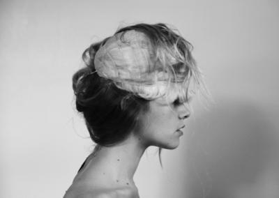 Whole Brain, 2014